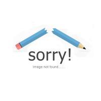 Ladies Double Layer Chiffon Elastic Waist Chiffon Long Pleated Maxi Skirt Dress